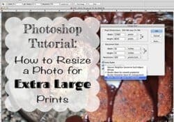 Photoshop Tutorial: How to Resize a Photo for Extra Large Prints