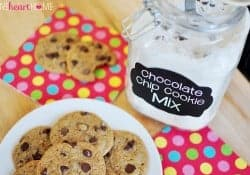 Homemade Chocolate Chip Cookie Mix ~ for fresh, chewy cookies in a flash!