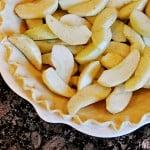 Fool-Proof Flaky Butter Pie Crust | {Five Heart Home}