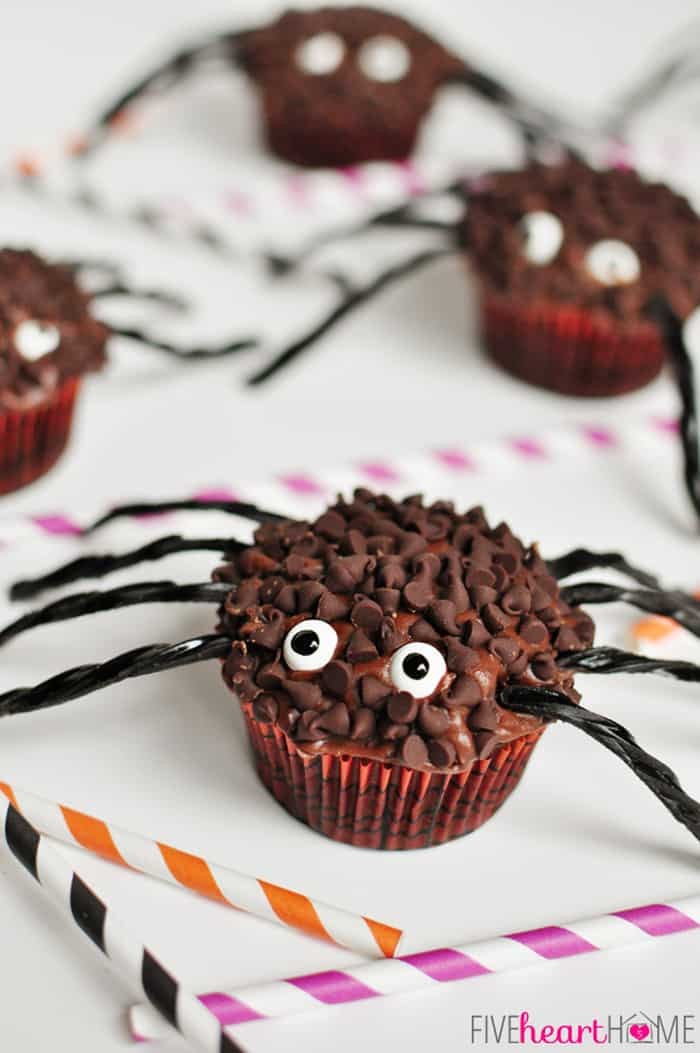spider cupcakes for halloween five heart home