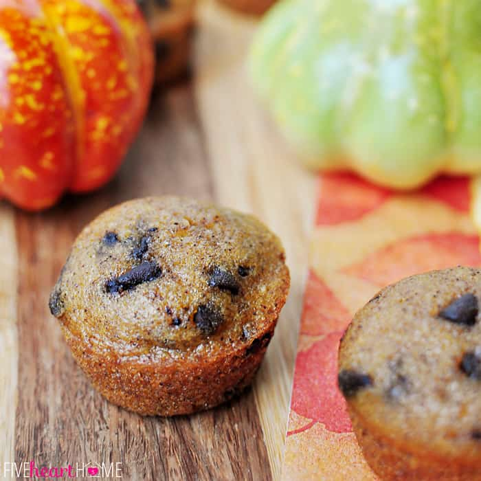 Pumpkin Mini Muffin studded with chocolate chips.