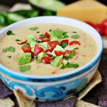 Cheddar and Sour Cream Queso ~ instead of processed cheese, this creamy dip boasts loads of flavor from all natural ingredients   {Five Heart Home}