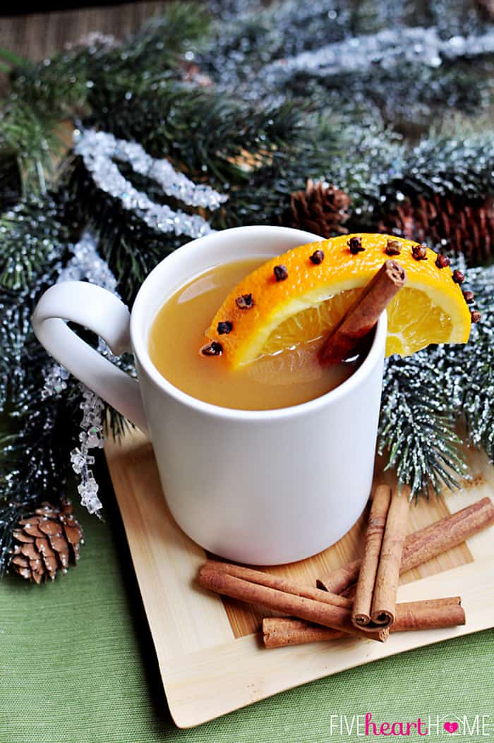 In a White Mug with Orange and Cinnamon Stick Garnish and Evergreen Sprigs in the Background