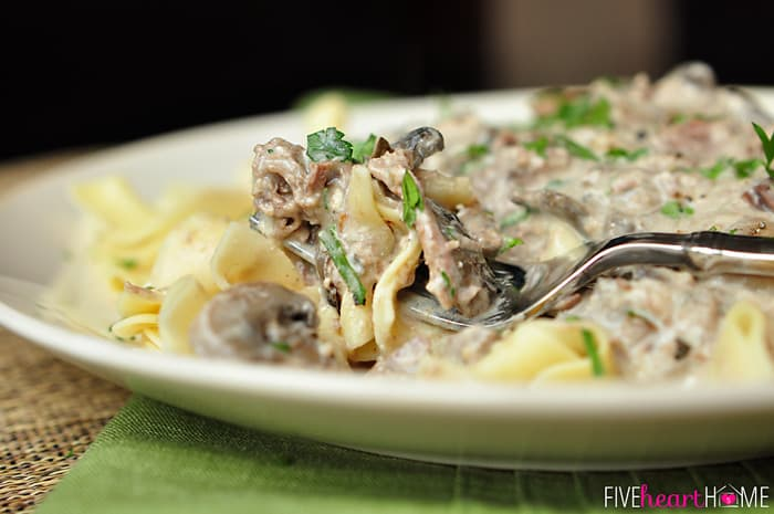 Fork Full of Noodles, Mushrooms and Beef with a Garnish of Fresh Parsley