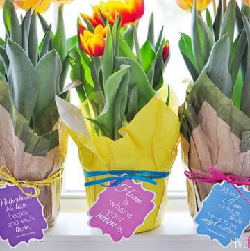 Mother's Day Gift Tags: Free Printables ~ Featuring Mom Quotes