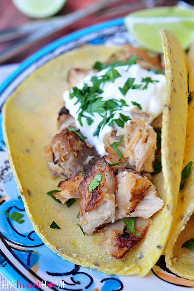 Open Faced Slow Cooker Carnitas Tacos (or Mexican Pulled Pork) in Corn Tortilla with a Dollop of Sour Cream and Garnish of Cilantro