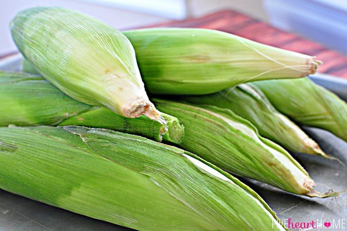 Fresh Corn in Husk Before it Goes in the Oven