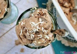 Double Chocolate Coconut Ice Cream {Dairy-Free}