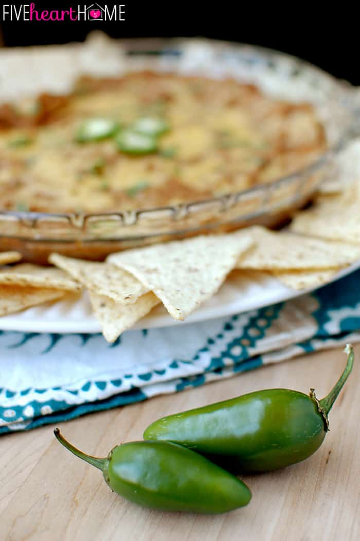 Warm and Cheesy Bean Dip ~ quick and easy, full of flavor, and also makes a great filling for tacos, burritos, quesadillas, and more! | FIveHeartHome.com