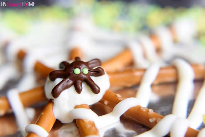 Close-Up of Chocolate Spider on Halloween Pretzel Treat
