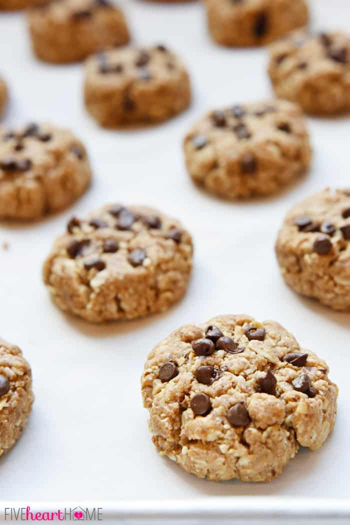 Wholesome Breakfast Cookies ~ packed with oats, nuts, whole wheat flour, coconut oil, and lightly sweetened with honey...perfect for breakfast-on-the-go or an anytime snack! | FiveHeartHome.com