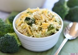 Broccoli Cheese Orzo with Chicken (or leftover turkey)