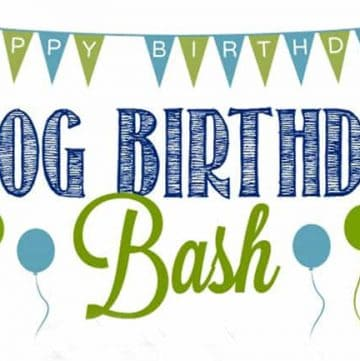 $500 PayPal or Amazon GIVEAWAY ~ Blog Birthday Bash!