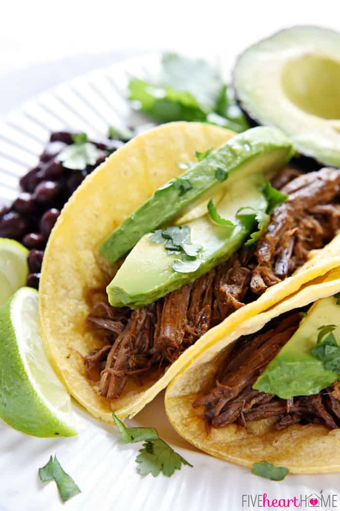 Barbacoa Chipotle on Plate with Avocado Slices
