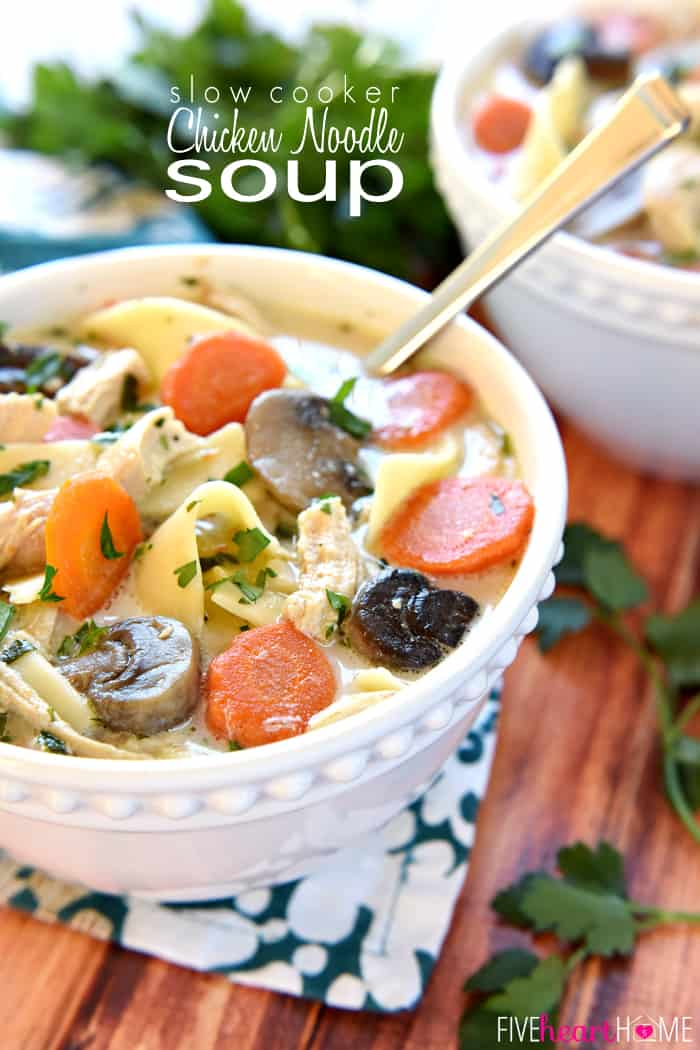 The BEST Slow Cooker Chicken Noodle Soup with Text Overlay
