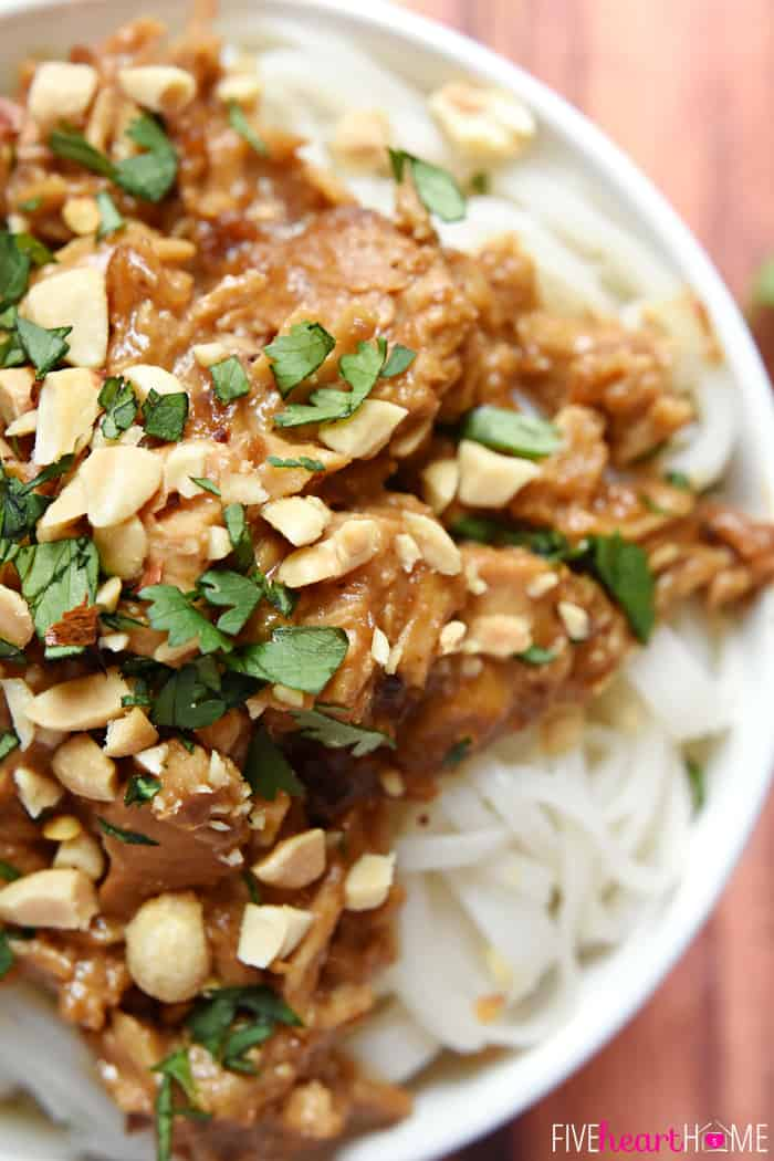 Crockpot Thai Peanut Chicken aerial view of bowl