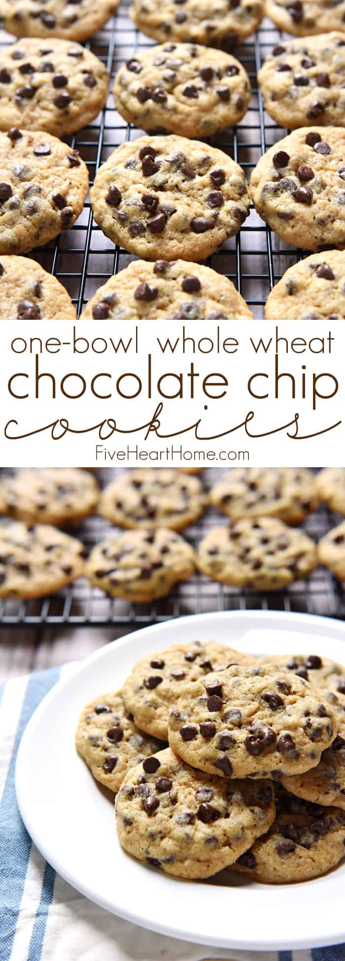 One-Bowl Whole Wheat Chocolate Chip Cookies ~ chewy, delicious, and ...