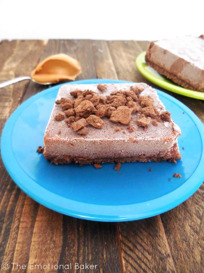 Chocolate Peanut Butter Ice Cream Bars on Bright Blue Plate