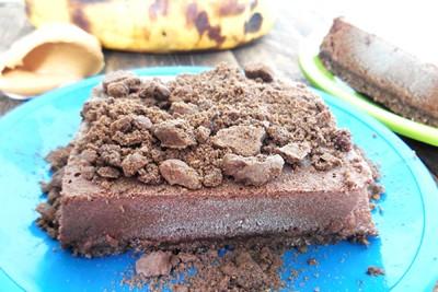 Chocolate Peanut Butter Ice Cream Bars