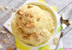 Tropical Banana Ice Cream