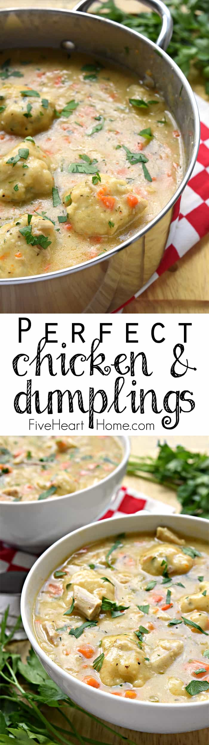 The BEST Chicken and Dumplings ~ a comfort food classic of flavorful broth, tender chicken, sweet carrots, fresh herbs, & fluffy homemade dumplings! | FiveHeartHome.com #chickenanddumplings