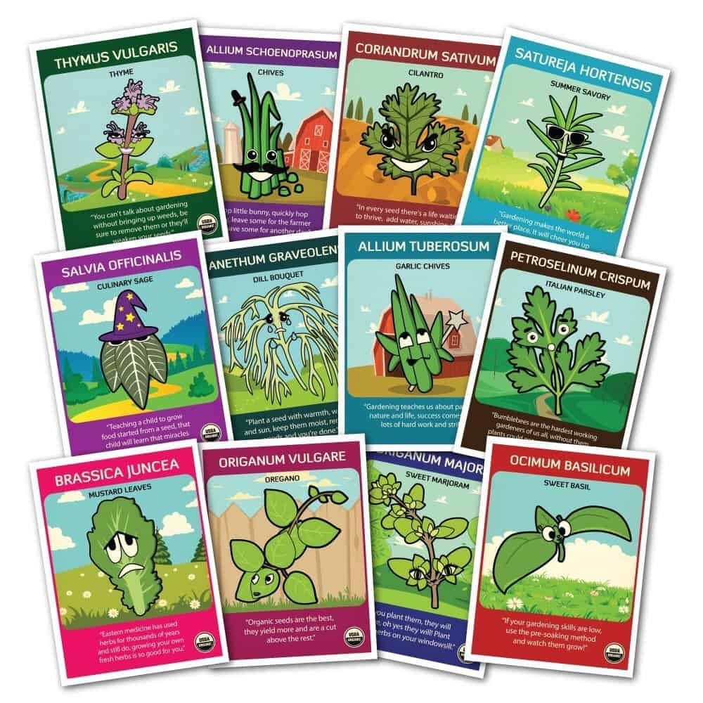 Herb Seed Packets Variety | 2015 Holiday Gift Guide for Foodies @ FiveHeartHome.com