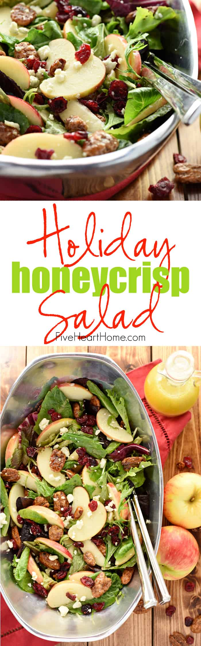 Holiday Honeycrisp Salad ~ full of flavor and texture, this gorgeous salad is loaded with fresh apple slices, crunchy toasted pecans, chewy dried cranberries, and zippy blue cheese, all dressed with a tangy-sweet apple cider vinaigrette atop a bed of your favorite salad greens...so vibrant and tasty you'll want to make it an annual addition to your Thanksgiving, Christmas, or New Year's menu! | FiveHeartHome.com via @fivehearthome