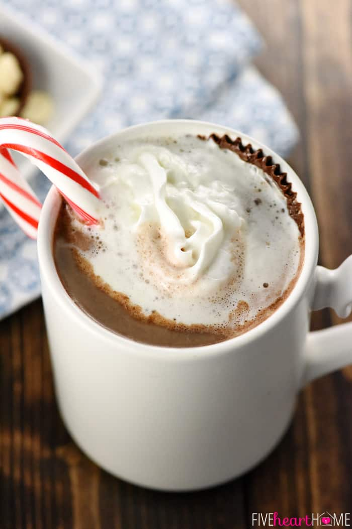 Hot Chocolate Floaters Completely Melted in White Mug with Peppermint Candy Canes