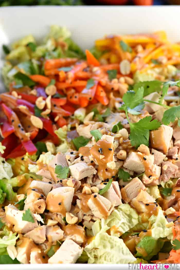 Close-Up of Thai Chicken Chopped Salad with crunchy Napa cabbage, juicy chicken, colorful peppers, sweet carrots, salty peanuts, and fresh cilantro