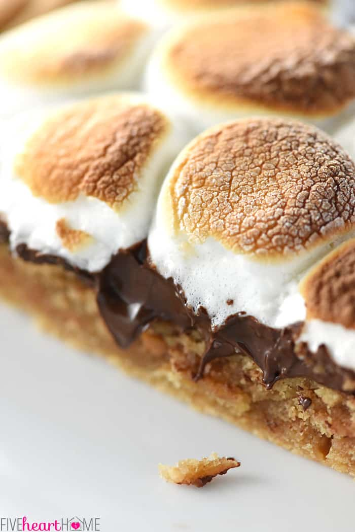 Peanut Butter Cookie S'mores Pizza Close-Up