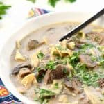 Slow Cooker Beef Stroganoff Soup ~ a classic comfort food dish gets a soup lover's makeover in this warm, hearty recipe, loaded with savory beef, mushrooms, and noodles...and your crock pot does all of the work! | FiveHeartHome.com