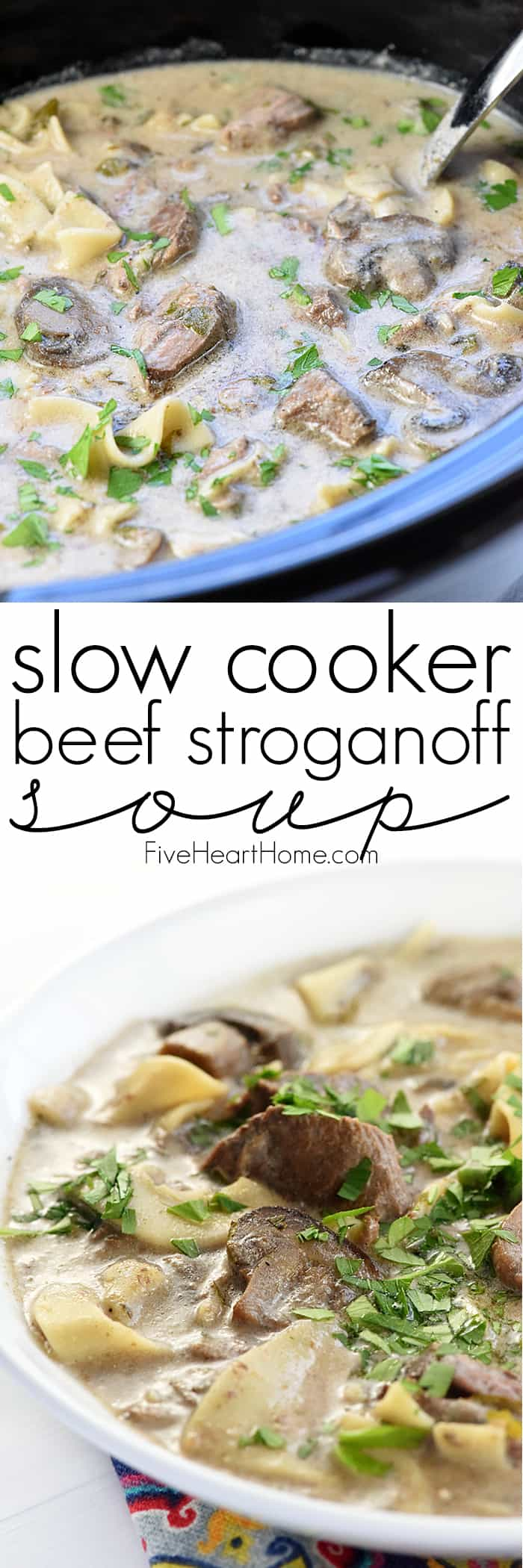 Slow Cooker Beef Stroganoff Soup Collage with Text Overlay