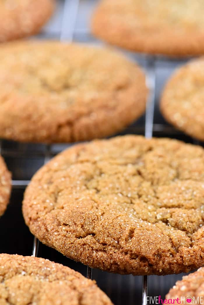 Soft & Chewy Ginger Cookies ~ loaded with warm spice and coated in crunchy raw sugar for crinkly, sparkly cookies that are as pretty as they are delicious! | FiveHeartHome.com