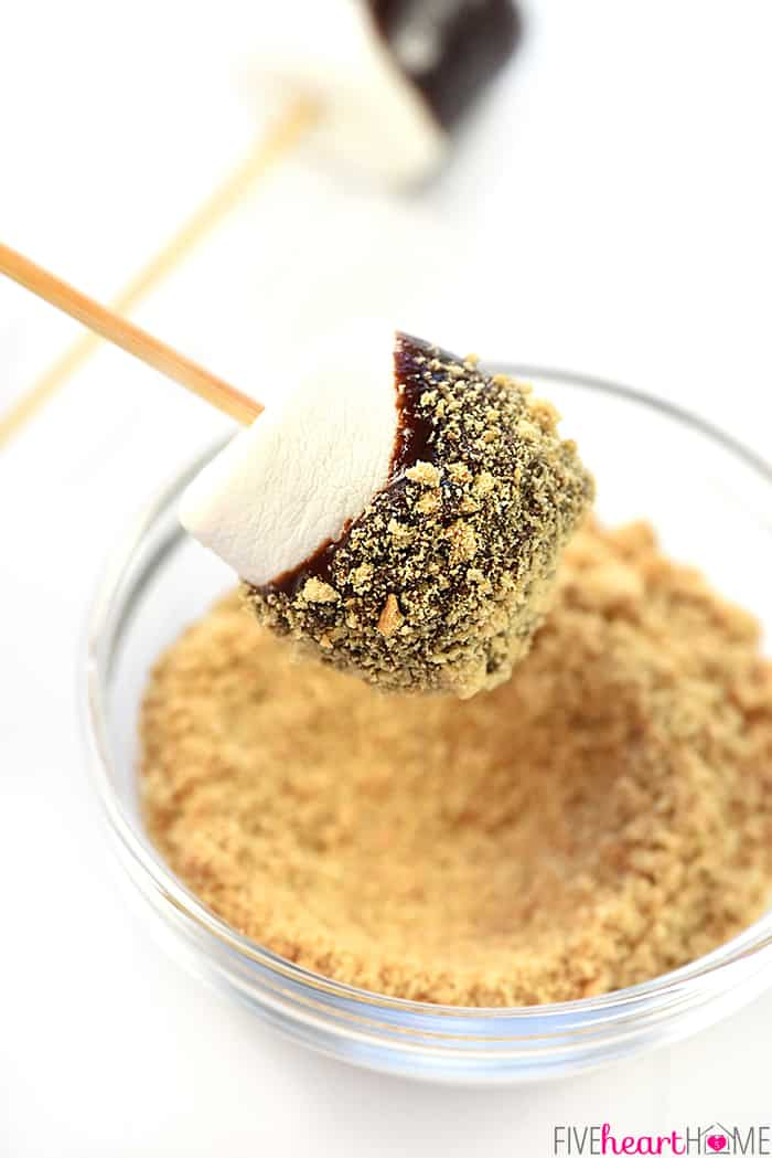 Marshmallow Dipped in Slow Cooker Chocolate Peanut Butter Fondue Rolled in Graham Cracker Crumbs