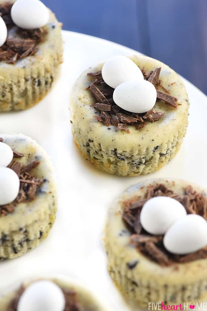 Bird S Nest Mini Oreo Cheesecakes Easy Easter Dessert