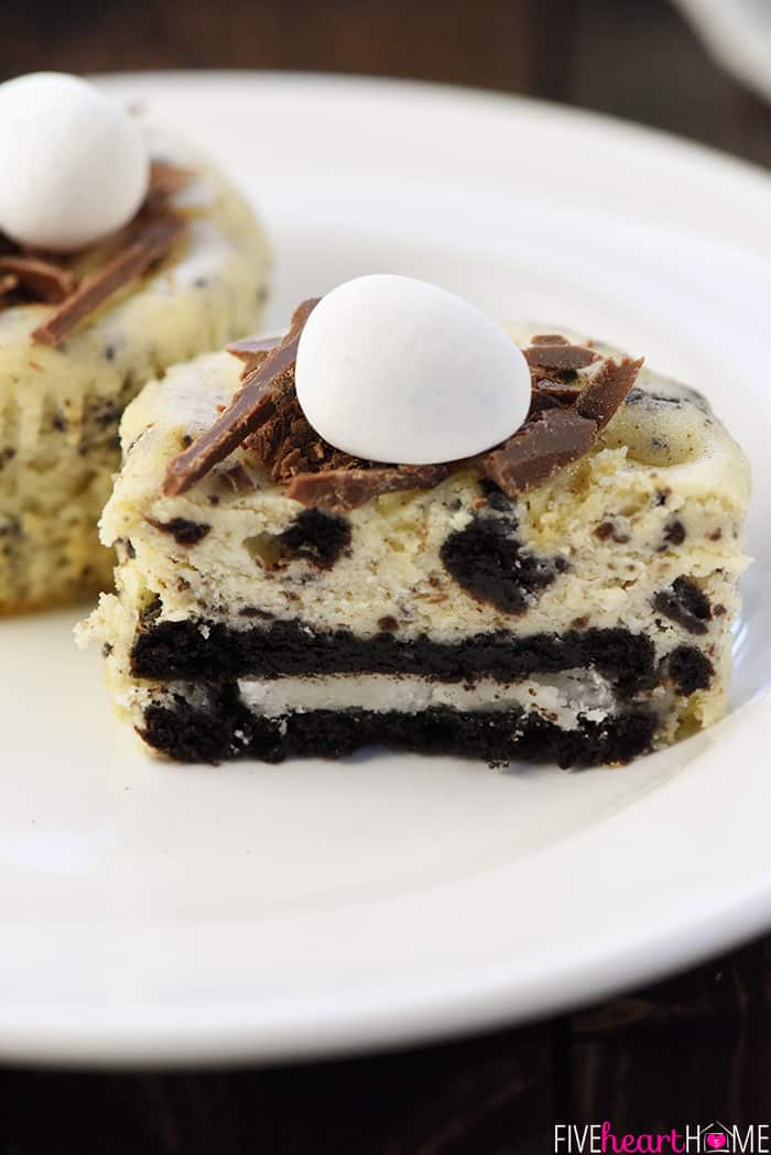 Cheesecake with Oreo Crust
