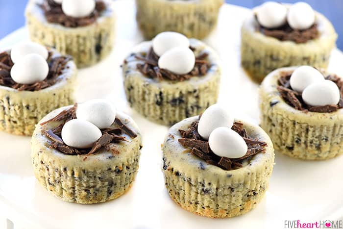 Bird's Nest Mini Oreo Cheesecakes ~ Easy Easter Dessert!