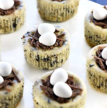 Bird's Nest Mini Oreo Cheesecakes | Easter Dessert Recipe ~ simple cheesecake filling is studded with Oreos, baked in muffin pans, and topped with chocolate shavings and candy eggs for a fun, easy treat that's perfect for spring! | FiveHeartHome.com