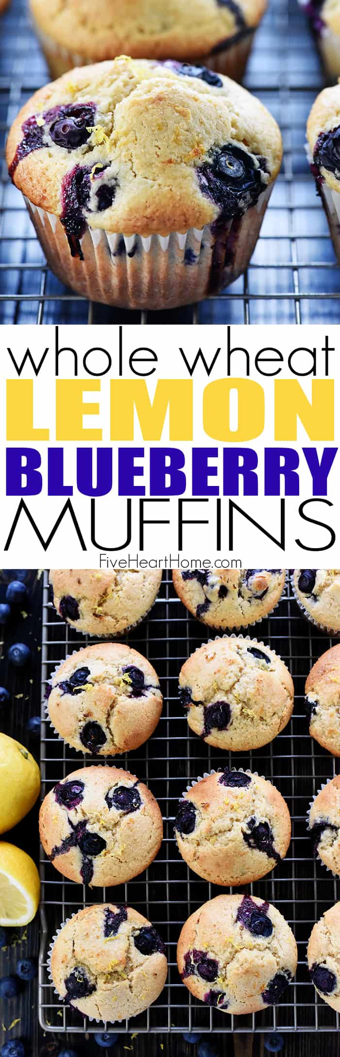 Lemon Blueberry Muffins ~ light, tender, and bursting with fresh lemon, juicy blueberries, and whole wheat flour for a wholesome breakfast or snack! | FiveHeartHome.com via @fivehearthome