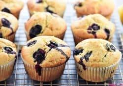 Whole Wheat Lemon Blueberry Muffins
