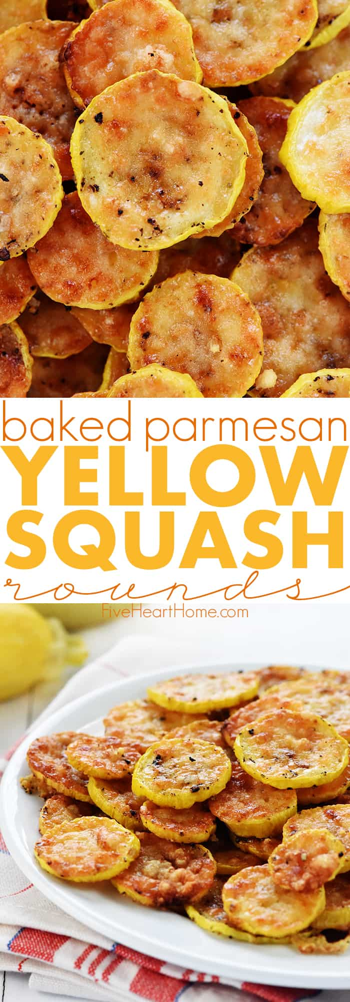 Baked Parmesan Yellow Squash Rounds Recipe ~ an easy and delicious summer side dish recipe requiring just two ingredients: yellow squash and grated Parmesan! | FiveHeartHome.com