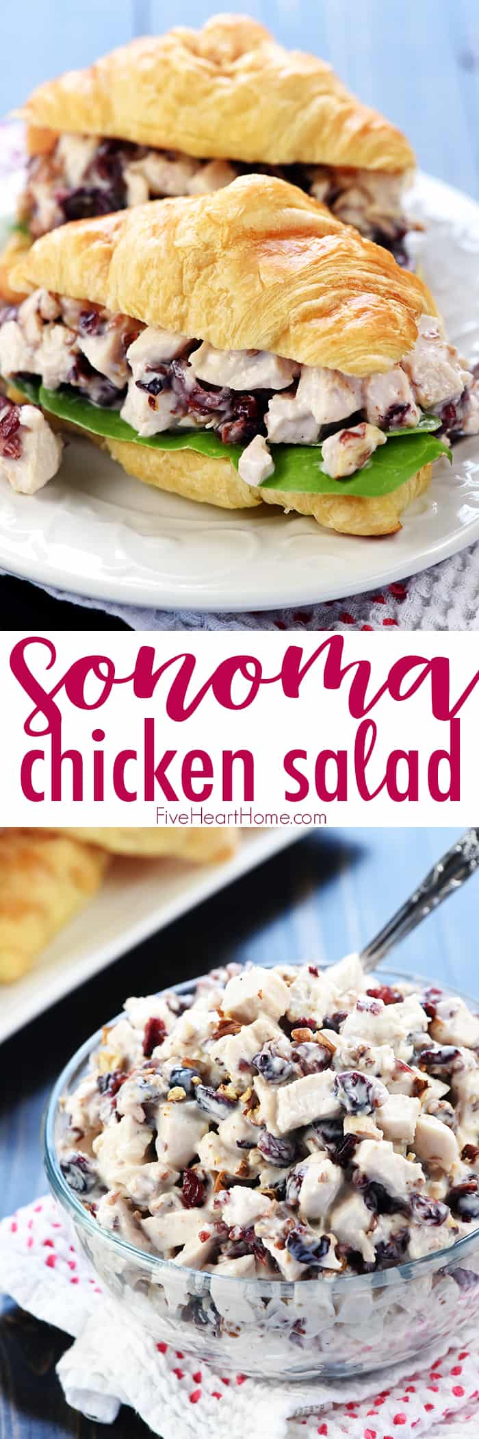 Sonoma Chicken Salad ~ studded with toasted pecans and dried cranberries in a lightened-up dressing including Greek yogurt & honey, this recipe makes scrumptious sandwiches for lunch, dinner, picnics, parties, or bridal and baby showers! | Five Heart Home.com