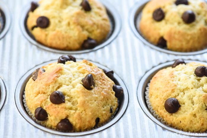 chocolate chip muffins in pan