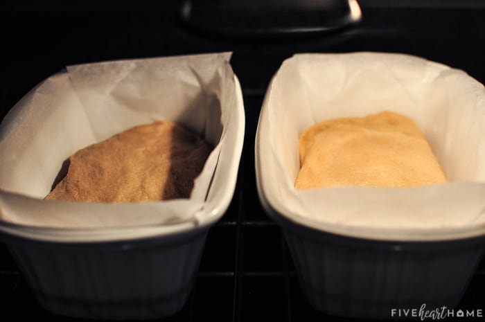 Whole Wheat Bread recipe in pans