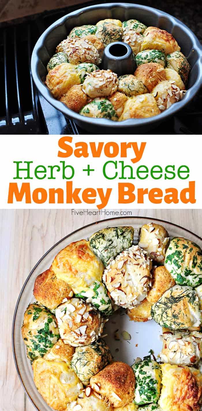 Savory Herb and Cheese Monkey Bread ~ this quick and easy savory monkey bread is made with refrigerated biscuits and festive for the holidays, from Thanksgiving to Christmas to Easter! | FiveHeartHome.com