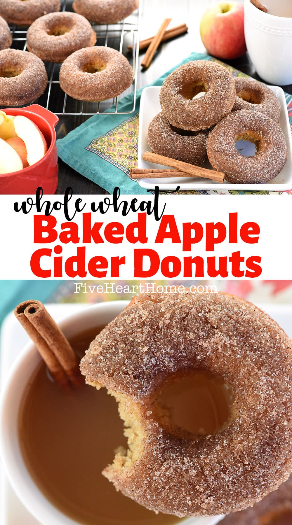 Baked Apple Cider Donuts ~ these delicately spiced, 100% whole wheat donuts are tender on the inside and coated in crunchy cinnamon sugar on the outside for a tasty fall breakfast treat! | FiveHeartHome.com via @fivehearthome