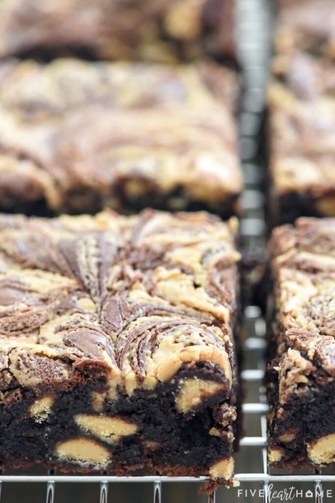 Close-up of Peanut Butter Brownie recipe on cooling rack.